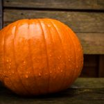 The Pumpkin – a poem for the fall